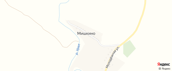Улица Мишкина на карте деревни Мишкино с номерами домов