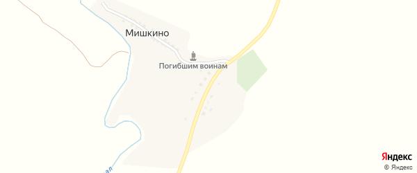 Молодежная улица на карте деревни Мишкино с номерами домов
