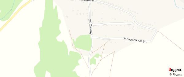 Улица Олотау на карте деревни Ишмекеево с номерами домов
