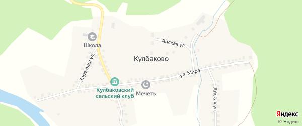 Заречная улица на карте деревни Кулбаково с номерами домов