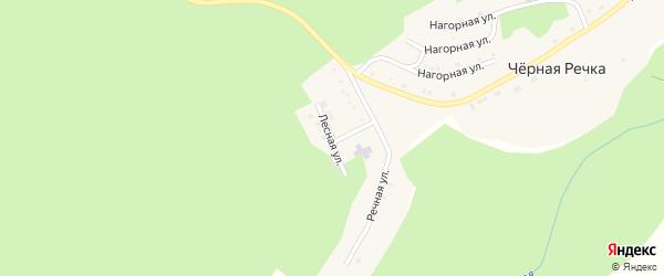 Лесная улица на карте поселка Черной Речки с номерами домов