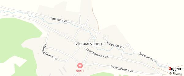 Центральный переулок на карте деревни Истамгулово с номерами домов