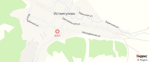 Молодежная улица на карте деревни Истамгулово с номерами домов