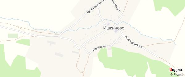 Школьная улица на карте деревни Ишкиново с номерами домов