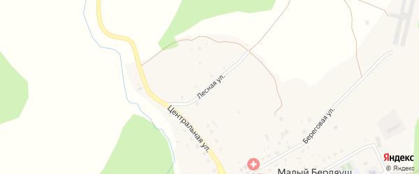 Лесная улица на карте поселка Малого Бердяуша с номерами домов