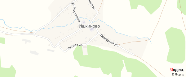 Лесной переулок на карте деревни Ишкиново с номерами домов