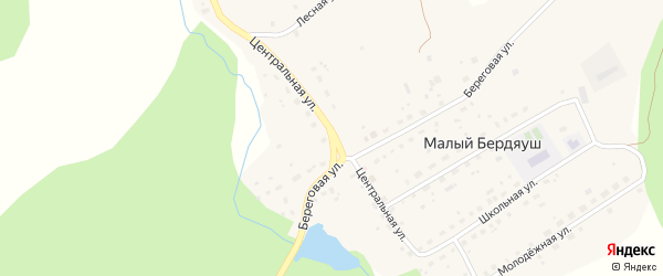 Центральная улица на карте поселка Малого Бердяуша с номерами домов