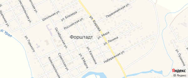 Улица Пушкина на карте села Форштадта с номерами домов