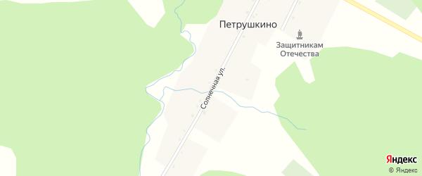 Солнечная улица на карте деревни Петрушкино с номерами домов
