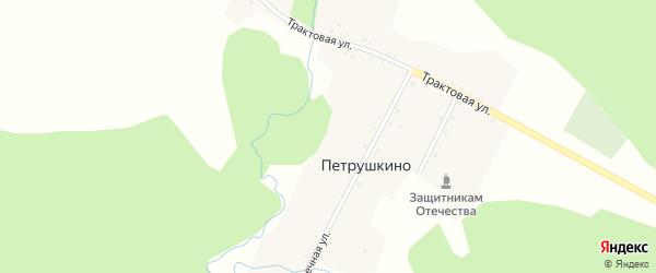 Трактовая улица на карте деревни Петрушкино с номерами домов