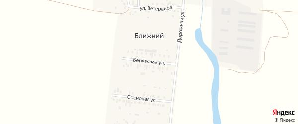Березовая улица на карте Ближнего поселка с номерами домов