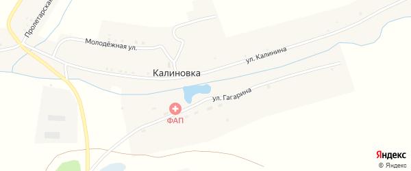Улица Гагарина на карте села Калиновки с номерами домов