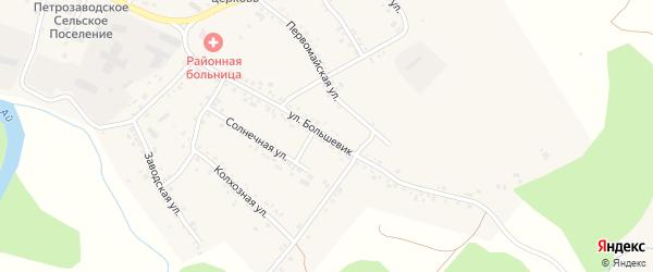 Улица Большевик на карте села Петропавловки с номерами домов
