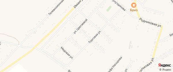 Улица Менделеева на карте Учалы с номерами домов