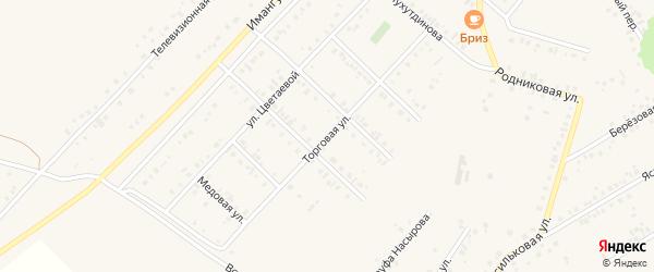 Торговая улица на карте Учалы с номерами домов