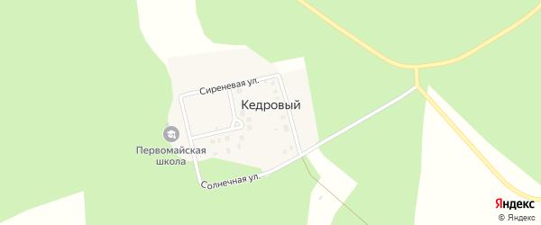 Солнечная улица на карте Кедрового поселка с номерами домов
