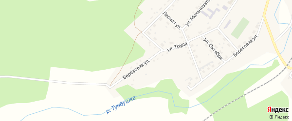 Березовая улица на карте Центрального поселка с номерами домов