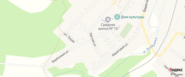 Лесная улица на карте Центрального поселка с номерами домов