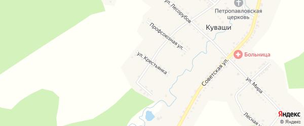 Улица Крестьянка на карте села Куваши с номерами домов