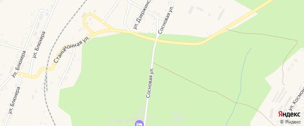 Сосновая улица на карте Кусы с номерами домов