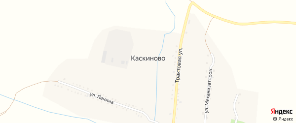 Лесная улица на карте деревни Каскиново с номерами домов
