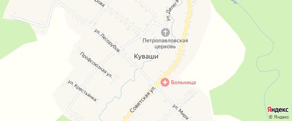 Пионерская улица на карте села Куваши с номерами домов