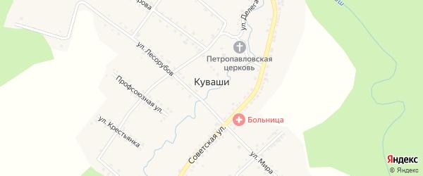 Улица Делегатка на карте села Куваши с номерами домов