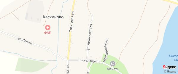 Улица Механизаторов на карте деревни Каскиново с номерами домов