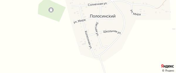 Колхозная улица на карте Полосинского поселка с номерами домов