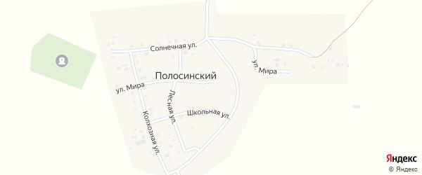 Улица Мира на карте Полосинского поселка с номерами домов