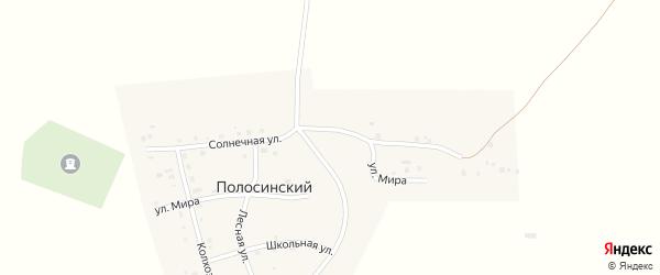 Солнечная улица на карте Полосинского поселка с номерами домов