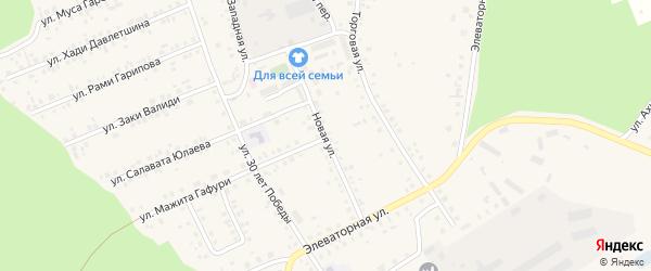 Новая улица на карте села Учалы с номерами домов