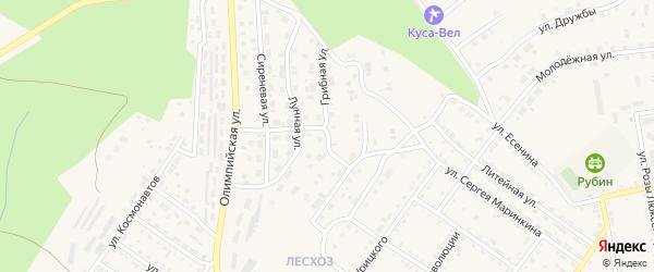 Грибная улица на карте Кусы с номерами домов