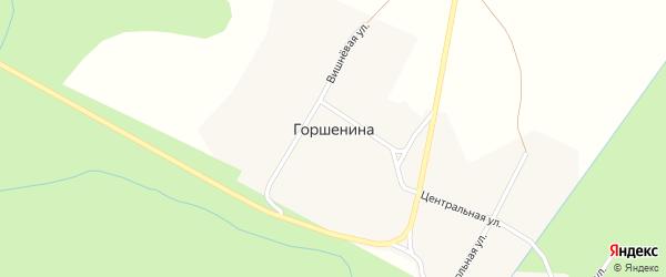 Центральная улица на карте деревни Горшенины с номерами домов