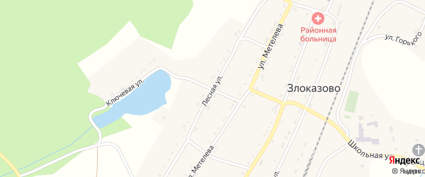 Лесная улица на карте села Злоказово с номерами домов