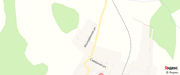 Молодежная улица на карте села Злоказово с номерами домов
