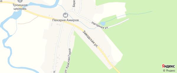 Заводская улица на карте села Злоказово с номерами домов