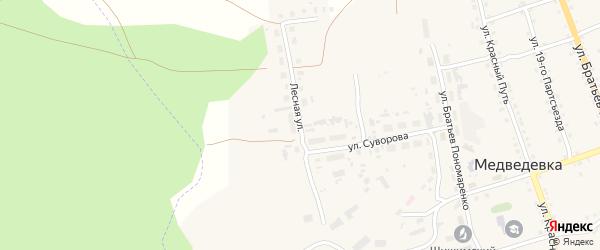Лесная улица на карте села Медведевки с номерами домов