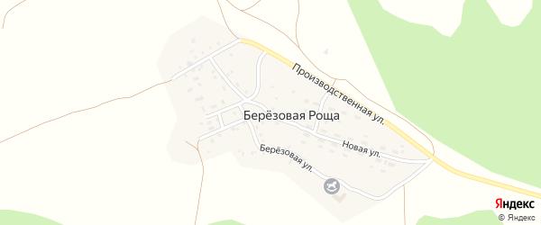 Березовый переулок на карте поселка Березовой Рощи с номерами домов