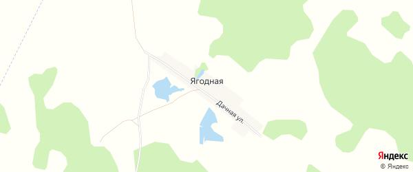 Карта Ягодной деревни в Челябинской области с улицами и номерами домов