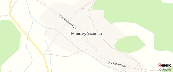 Центральная улица на карте деревни Маломуйнаково с номерами домов
