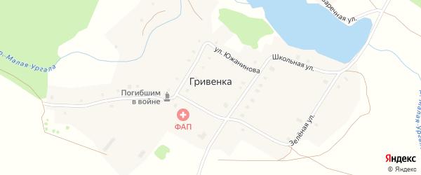 Улица Южанинова на карте деревни Гривенки с номерами домов