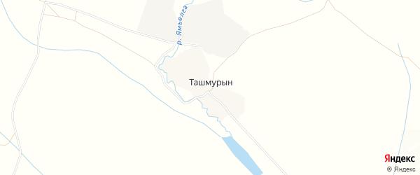Карта деревни Ташмурына в Башкортостане с улицами и номерами домов
