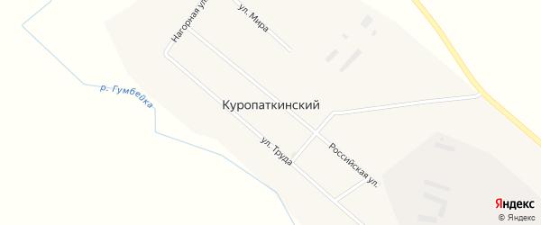 Нижний переулок на карте Куропаткинского поселка с номерами домов
