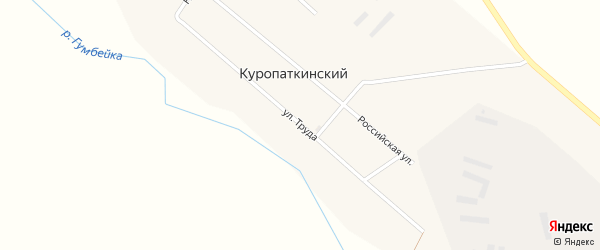 Улица Труда на карте Куропаткинского поселка с номерами домов