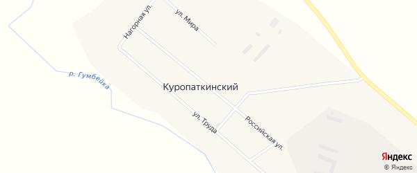 Российская улица на карте Куропаткинского поселка с номерами домов