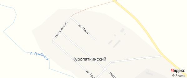 Улица Мира на карте Куропаткинского поселка с номерами домов