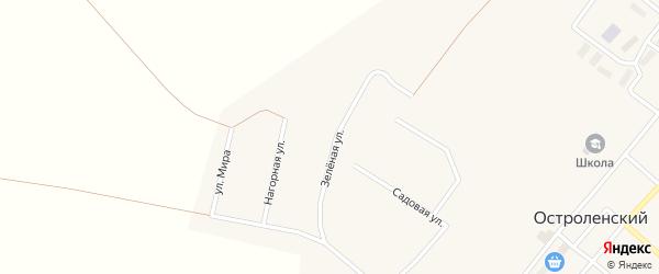 Зеленая улица на карте Остроленского поселка с номерами домов