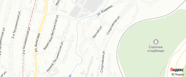 Лесная улица на карте поселка Тайнака с номерами домов