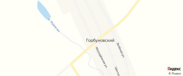 Молодежная улица на карте Горбуновского поселка с номерами домов